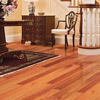 Ark Elegant Exotics Solid Wood Flooring at Discount Prices