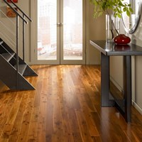 Ark French Collection Wood Flooring at Discount Prices