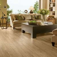 Armstrong Coastal Living Laminate Flooring at Discount Prices