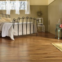 Armstrong Exotics Laminate Flooring at Discount Prices