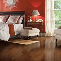 "Bruce American Treasures 3 1/4"" Plank Wood Flooring at Discount Prices"