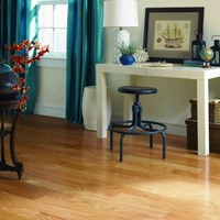 "Harris Wood Harris One 3"" Wood Flooring at Discount Prices"