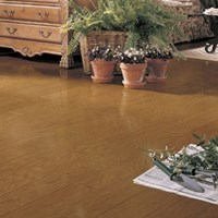Mannington Montana Oak Plank Wood Flooring at Discount Prices