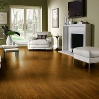 armstrong-rustics-laminate-flooring-collection