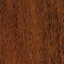Armstrong Grand Illusions TigerLaminate Flooring