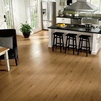 Armstrong Rustics Premium Laminate Flooring at Discount Prices