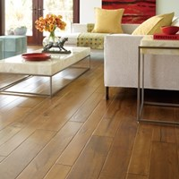 Bella Cera Clinque Terre Wood Flooring at Discount Prices