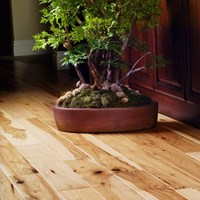 Garrison Deluxe Wood Flooring at Discount Prices
