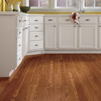 Tarkett Journeys Laminate Flooring at Discount Prices