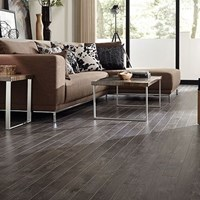 Tarkett Trends Laminate Flooring at Discount Prices